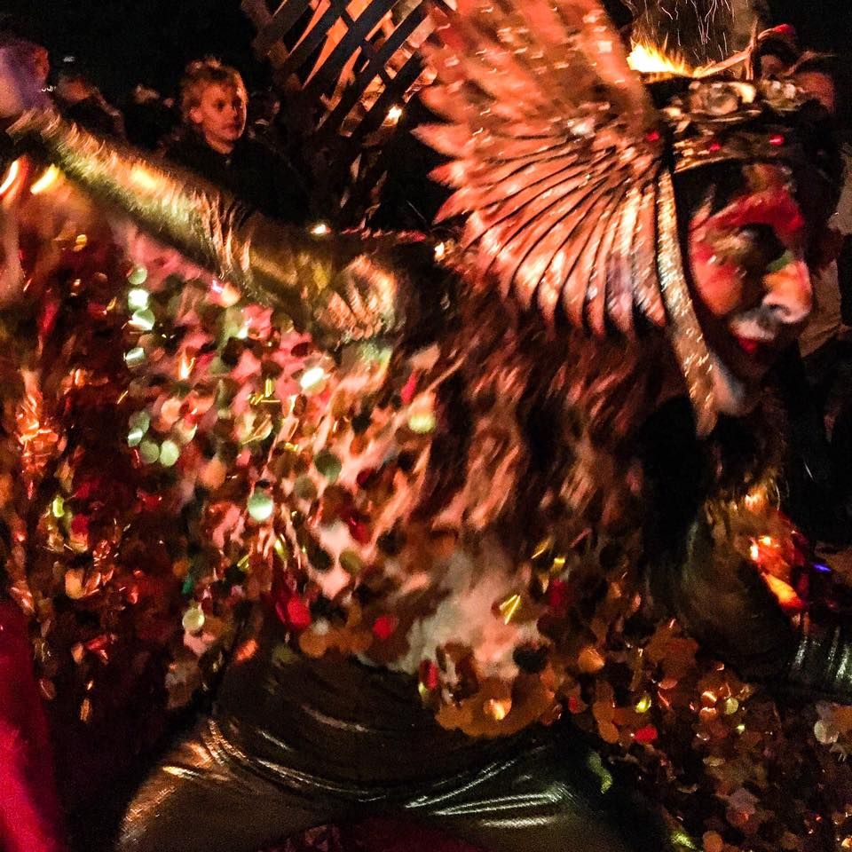 WildHoney Phoenix and The Firebirds