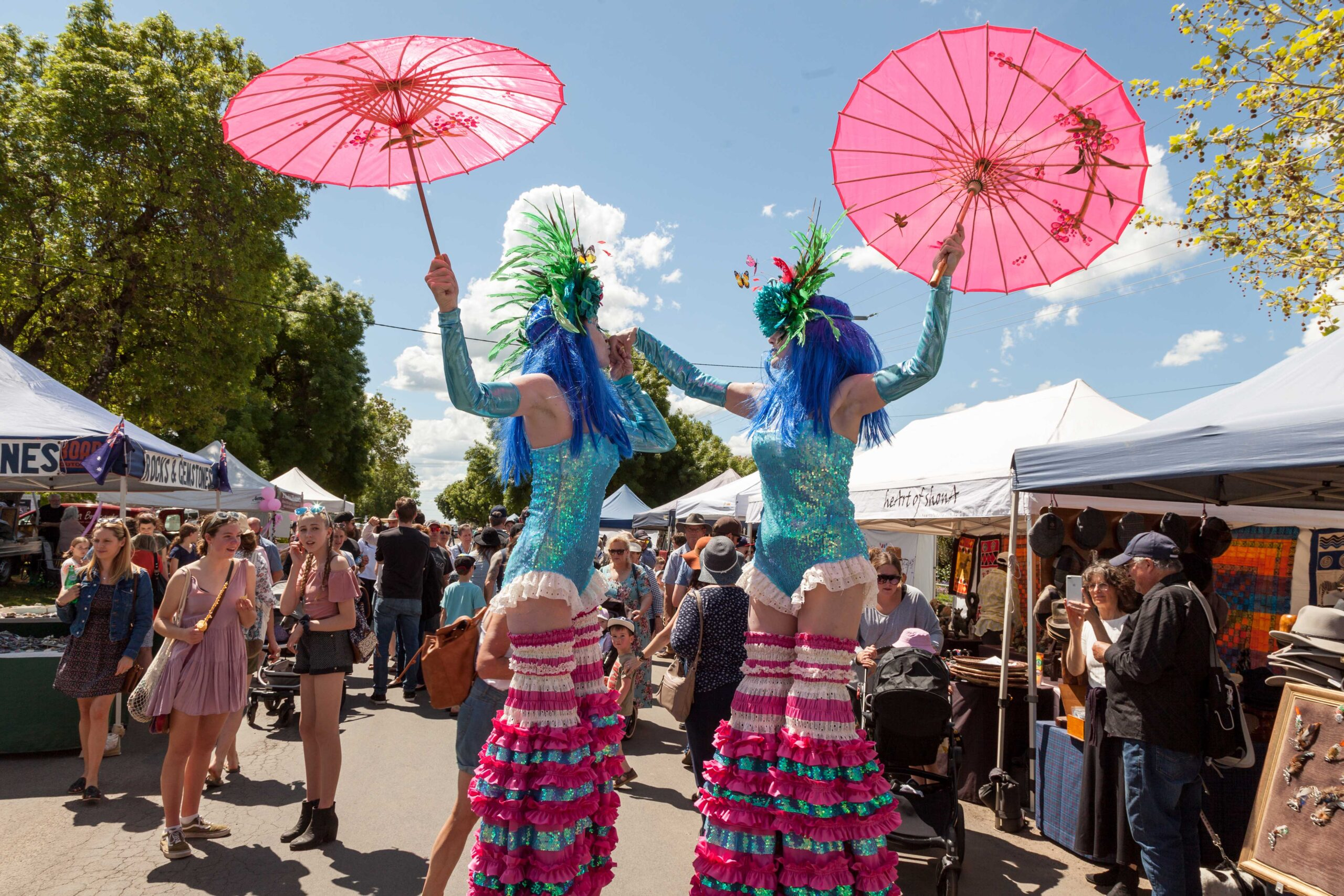 Wild Blooms at Birregura Festival  and Art Show Image Credit - Andrew Currie